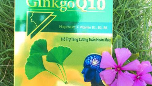 Ginkgo Q10 hỗ trợ tăng cường tuần hoàn máu não, bổ não, bổ thần kinh